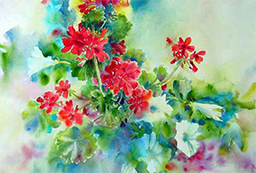 Geraniums In Blue